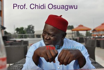 Ohanaeze Ndigbo: Why the cap fits Professor Chidi Osuagwu