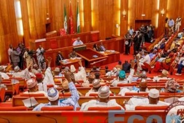 Senate Calls For Removal Of Service Chiefs Following Insurgent Attack On Farmers