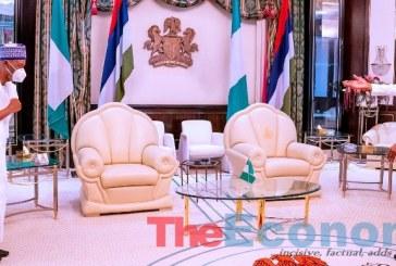 Buhari receives Sambo, hails Niger Republic's peaceful elections