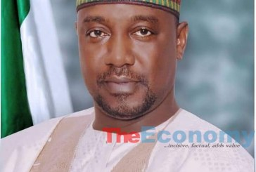 Insecurity: Bandits in North Recruited from Mali, Sudan, Others — Sani-Bello