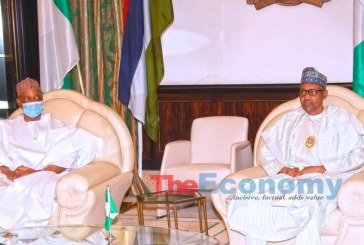 Buhari Hails Report of Niger's Peaceful Election from Sambo
