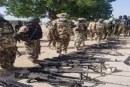 Troops 'repel terrorists incursion, eliminate scores in Borno'