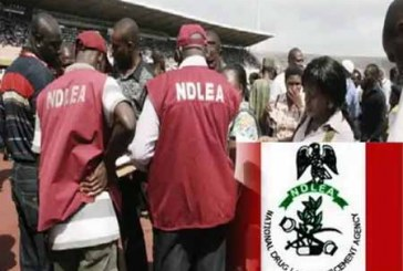 NDLEA arrests security agent, others for drug related offences