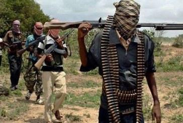 Gunmen Invade Leprosy Centre in Kaduna, Abduct Nurses, Babies, Security Guards