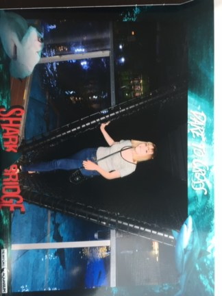 My friend, Ashley, also walking over the shark tank.