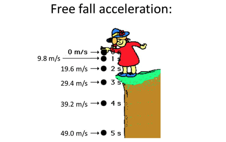 Introduction to Free Fall | The Edge Learning Center