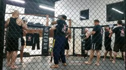 MMA techniques in the cage
