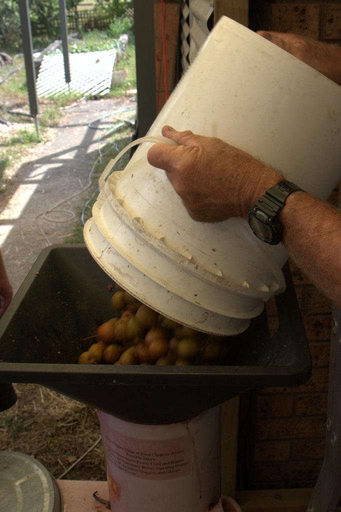 Fruit into pulper