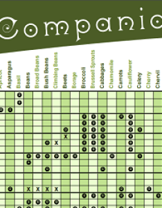 Permaculture research institute companion planting chart vegetable guide also charts for vegetables  fruit best of the web rh theedibleterrace