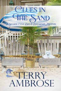 Clues in the Sand a Seaside Bed and Breakfast Mystery guest author Terry Ambrose
