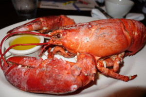 lobster, Canada Travel Itinerary, www.theeducationaltourist.com