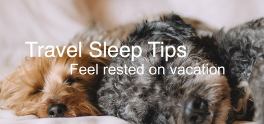 2 fluffy dogs asleep, Travel Sleep Tips, www.theeducationaltourist.com