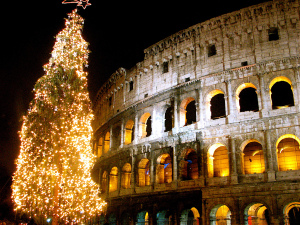Tree at the colosseum