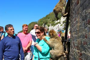 woman and barbary macaque in Gibraltar,  Planning a Family Adventure, www.theeducationaltourist.com