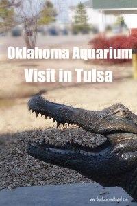 Oklahoma Aquarium Visit Tulsa