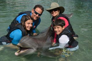 The Educational Tourist family with dolphin, Hilton Waikaloa Village, www.theeducationaltourist.com