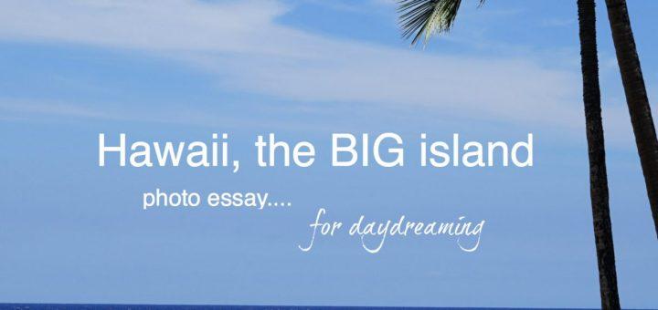 Beach in Hawaii, Hawaii the BIG island, www.theeducationaltourist.com