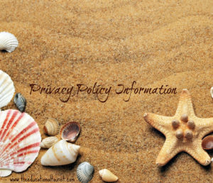 seashells on sand, Privacy Policy Information, www.theeducationaltourist.com