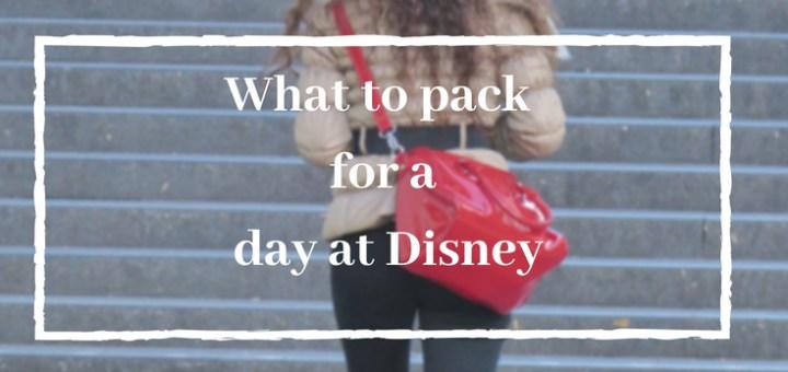 disney daypack