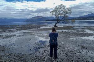 Travel blogger backpack for traveling