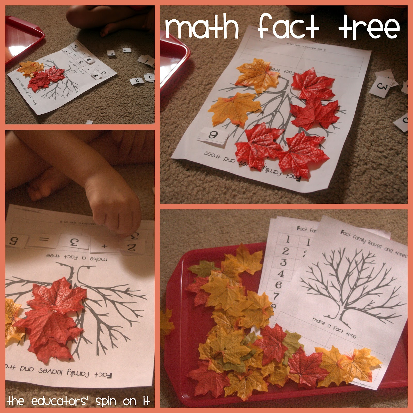 5 Simple Leaf Activities