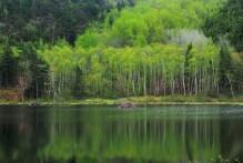 Eagle Lake - Acadia