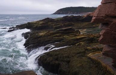 Shoreline - Acadia