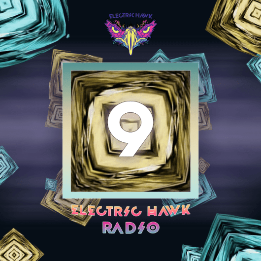 Electric Hawk Radio Episode 9 Cover