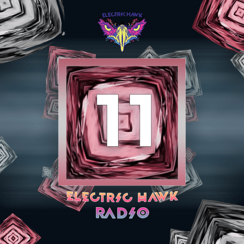 electric hawk radio episode 11 cover