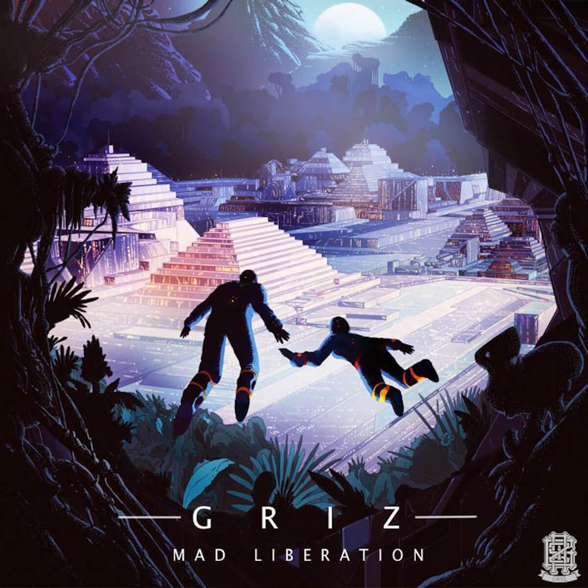 GRiZ Mad Liberation Vinyl