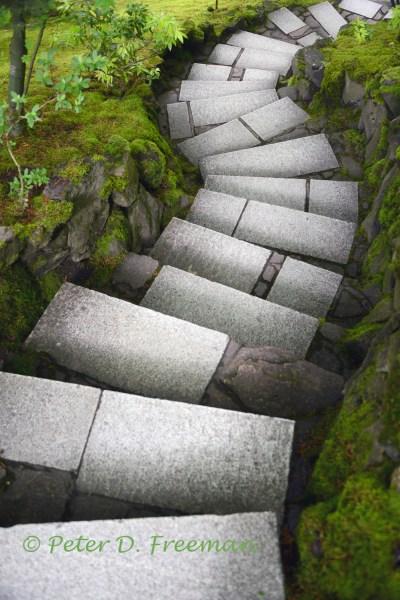 Zen Steps