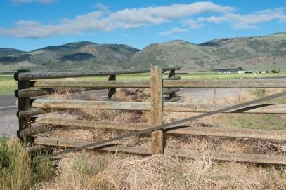 Tumbleweed Corral