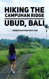 Hiking The Campuhan Ridge in Ubud, Bali www.TheEnchantedGypsy.com
