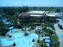 Disneyland Hotel Pool View Room