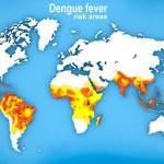 Map of Dengue fever spread