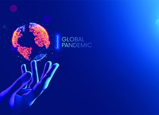 One Year of the Global Pandemic