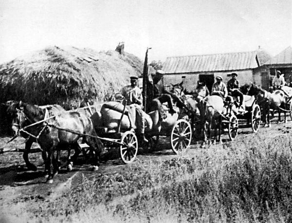 soviet collectivization Ukraine famine