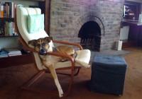 Ikea Poang Chair Cushion Leather