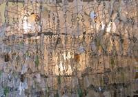 Sea Glass Chandelier Anthropologie