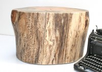 Tree Stump Side Table Pottery Barn