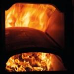 Biomass