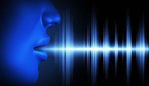 A Speaking Voice