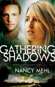 Interview with Nancy Mehl & GIVEAWAY  | The Engrafted Word