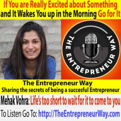 242: If You're Really Excited about Something and It Wakes You up in the Morning Go for It with Mehak Vohra Founder and Owner Jamocha Media LLC