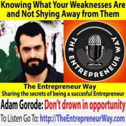 488: Knowing What Your Weaknesses Are and Not Shying Away from Them with Adam Gorode Co-Founder and Co-Owner of the AGW Group