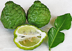 Image result for kaffir lime
