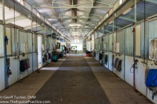 The inside of the show barn