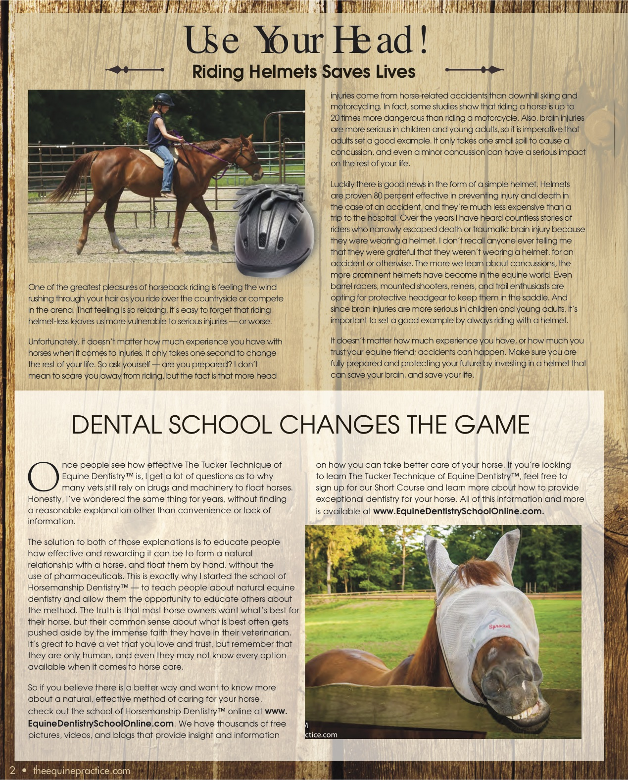The Equine Practice Rounds™ September 2015 page 2 of 4