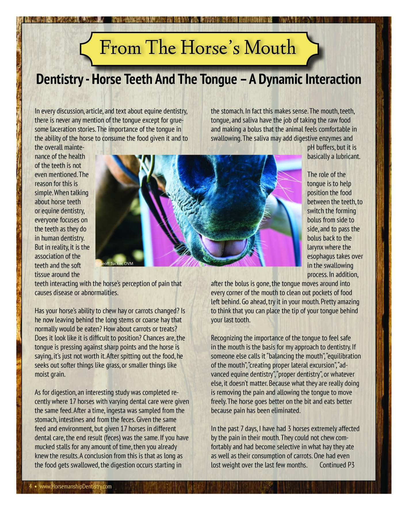 The Equine Practice Rounds™ Vol 1 Issue 2 page 4 of 4