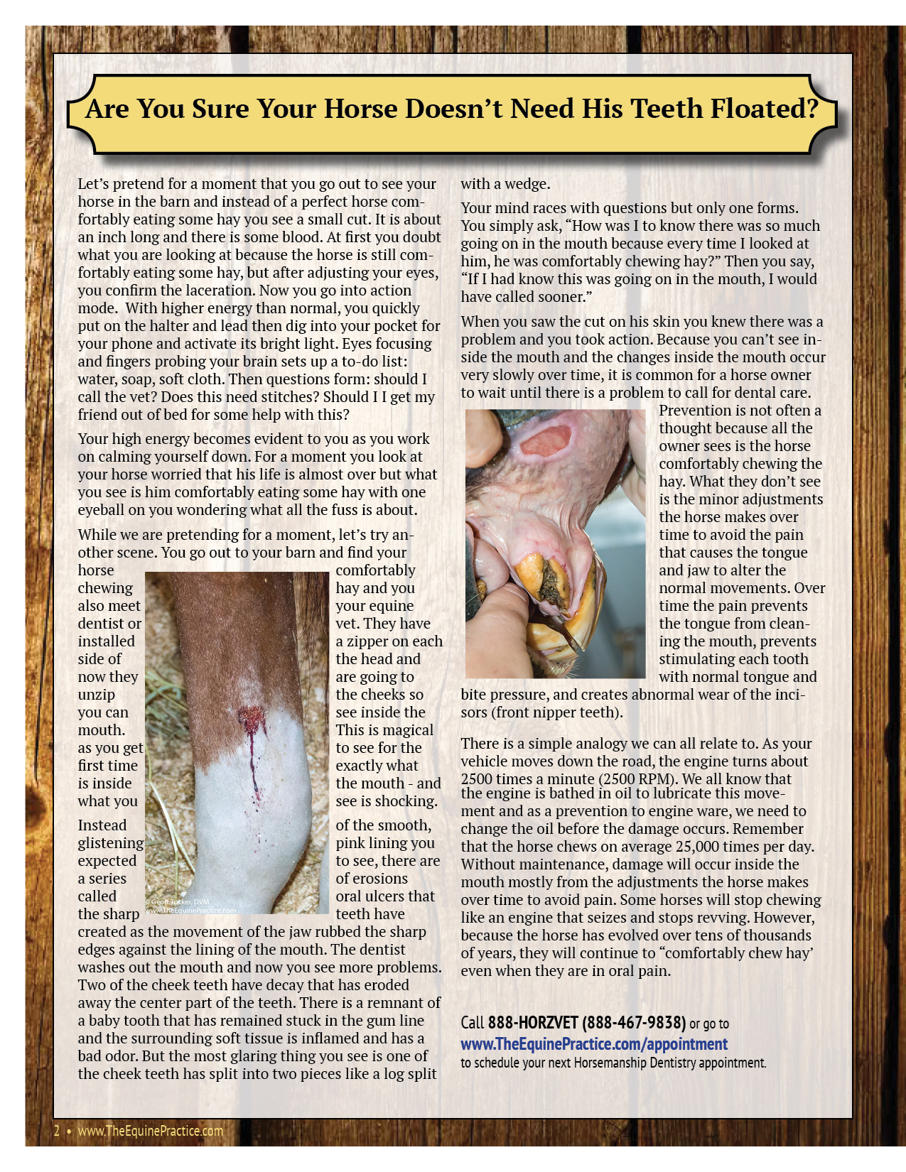 The Equine Practice Rounds™ Vol 1 Issue 3 page 2 of 4